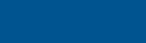 INCO Flex logo
